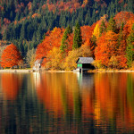 Fall. Photo: www.slovenia.info